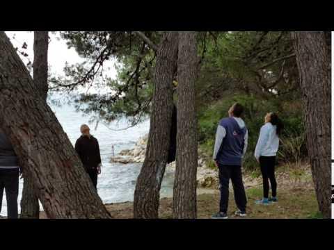 Program 11. mjesec - jutarnje vježbe uz more