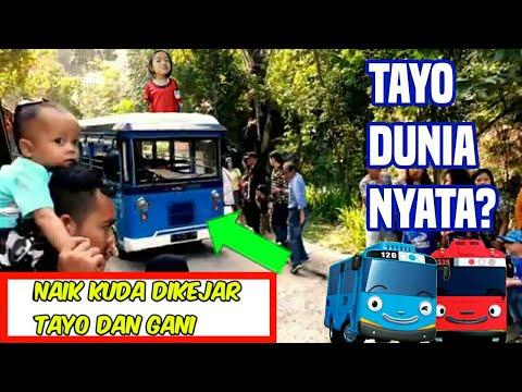 lagu-anak-indonesia-naik-delman,-hikari-naik-kuda-poni-dikejar-tayo-dan-ghani.-dago-dreampark-drama