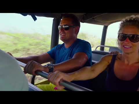 Baby Beach Off-Road Safari - De Palm Tours