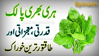Palak Ke Fayde || Spinach Health Benefits || Spinach Nutrition Facts || In Urdu/Hindi