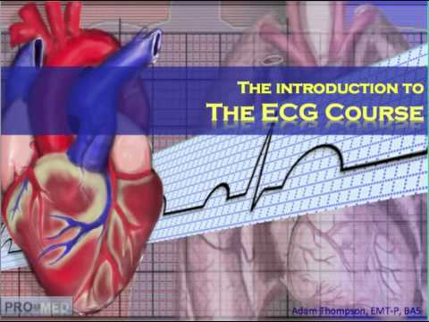 The ECG Course - Introduction - YouTube