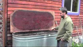 Simple & Effective Worm Composting on your Homestead