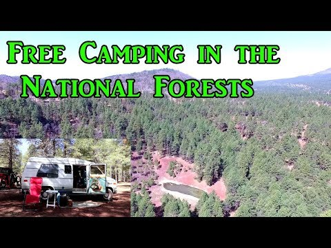 Free Camping in the National Forests - VanLife on the Road