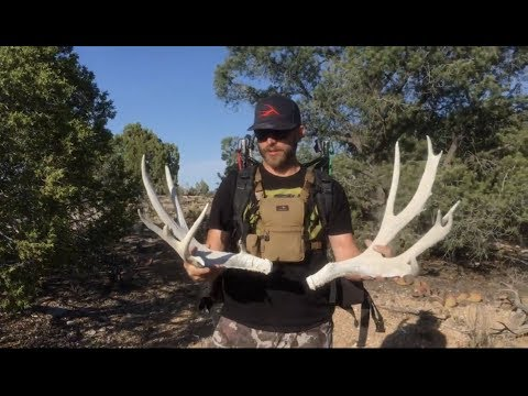 """Picking Up A 220"""" Class Mule Deer! Shed Hunting Antler Trader"""