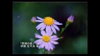 「野菊の墓」伊藤 左千夫 著 参照サイト:青空文庫(http://www.aozora....