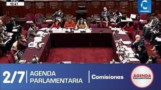 Sesión Comisión de Constitución 2/7 (24/06/19)