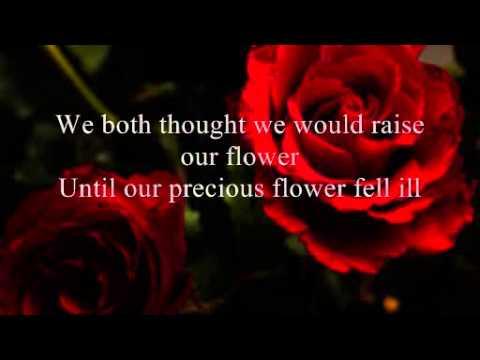 The Flower Of Love Youtube