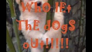 """Who Let The Dogs Out"" (With Lyrics) by Baha Men"
