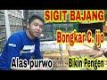 Ikuti Bongkar C Ijo Alas Purwo Sigit Bajang  Mp3 - Mp4 Download