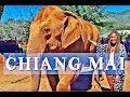 THAILAND TRAVEL VLOG CHIANG MAI