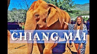 BEST OF THAILAND | CHIANG MAI TRAVEL VLOG