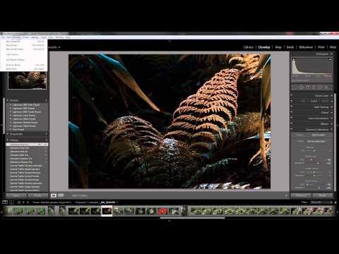 Camera Calibration in Lightroom 5