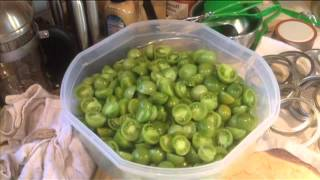 How I Canned Green Tomatoes in My Tiny House