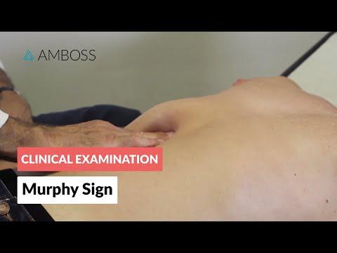 murphys sign funnycattv