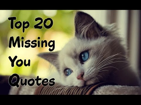 Top 20 Quotes About Missing Someone You Love Youtube