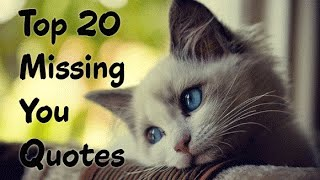 Top 20 Quotes about Missing Someone you Love