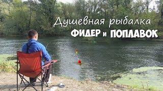 Душевная рыбалка! ЛОВЛЯ на ПОПЛАВОК и ФИДЕР на СЕВЕРСКОМ ДОНЦЕ