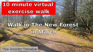 Virtual 10 minute Walk in The New Forest in March, with 2 minute interval marks
