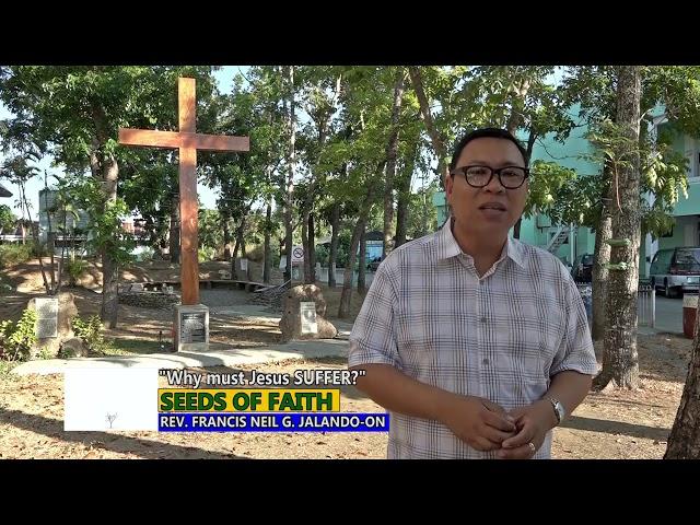 SEEDS OF FAITH  -