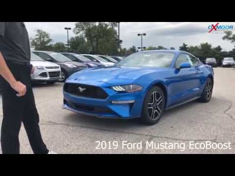 2019 ford mustang ecoboost for sale oxmoor ford lincoln louisville ky 40222 youtube. Black Bedroom Furniture Sets. Home Design Ideas
