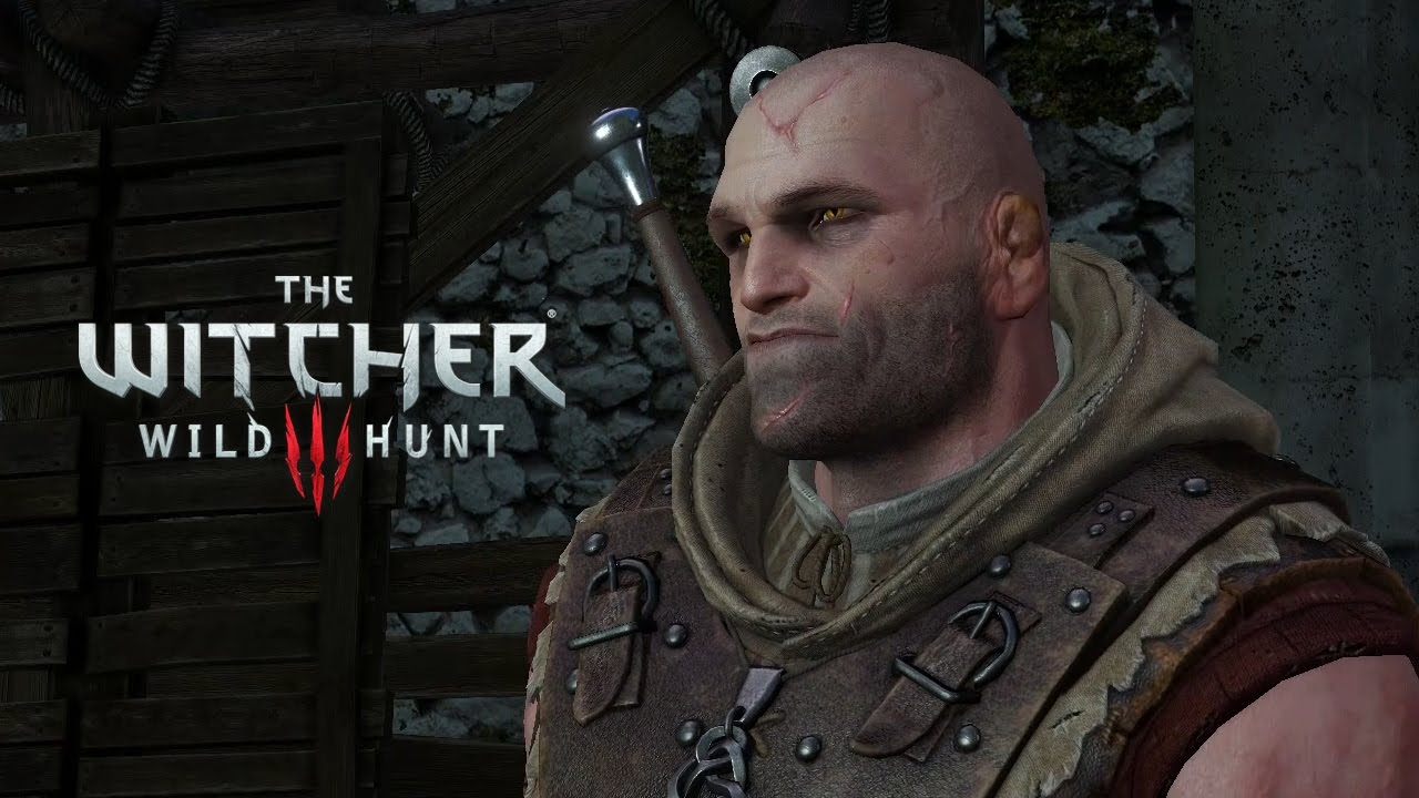 Witcher 3 Letho