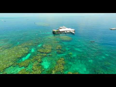 Reef Magic Cruises - Marine World, Great Barrier Reef, Cairns Queensland