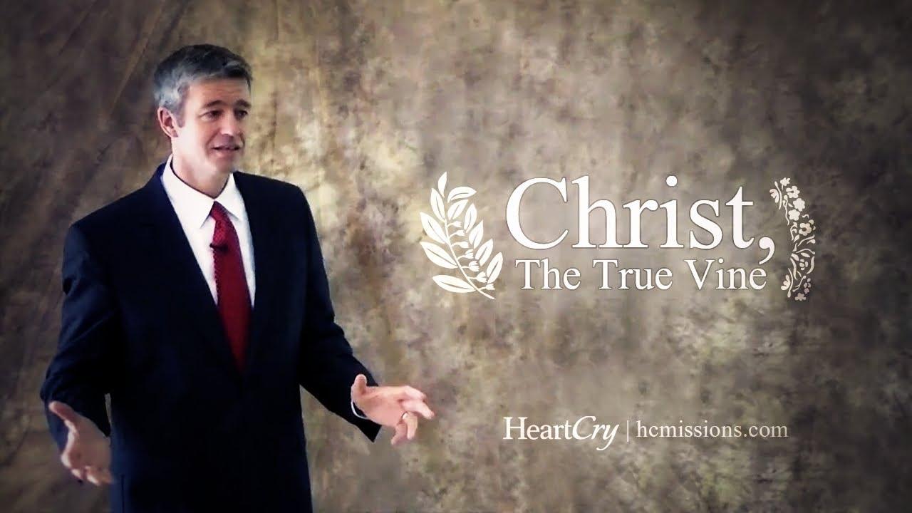 Download Christ, The True Vine - Paul Washer