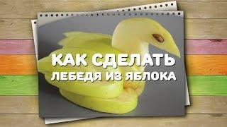 Как сделать лебедя из яблока / Хитрости жизни