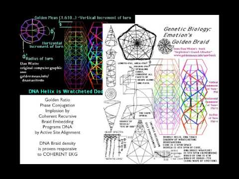 Origin of Negentropy-Dan Winter lecture Sci-Med Conference Rome-2016