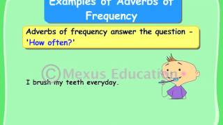 Learn English Grammar - Adverbs of Frequency