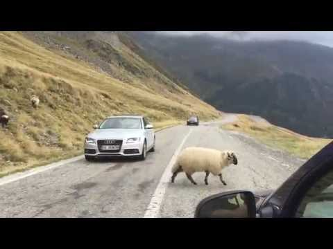 Transfagarasan Highway - Romania Time Lapse