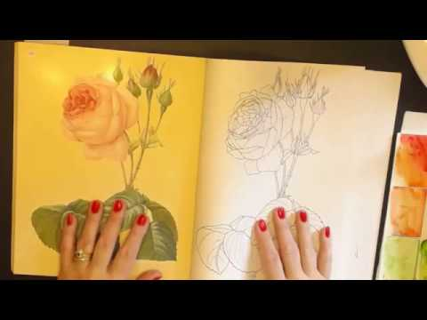 The Beauties of Nature colouring  book flip