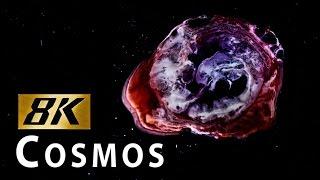 LA CRÉATION du COSMOS en 8K avec Canon 5DS | SHANKS FX | PBS Digital Studios