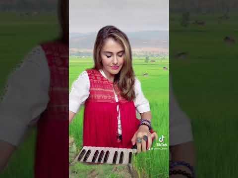 qataghani afghan music on harmunia