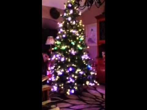 our i twinkle tree !! - YouTube