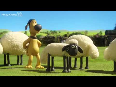 shaun the sheep championsheeps 10 episodes