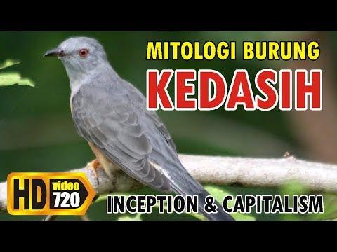 KEDASIH: Burung Kematian Jatidiri dan Kepunahan Bangsa