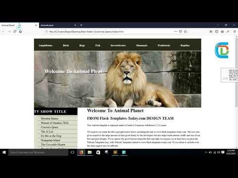Web Design Project For Beginners Bangla Tutorial || Animal Planet