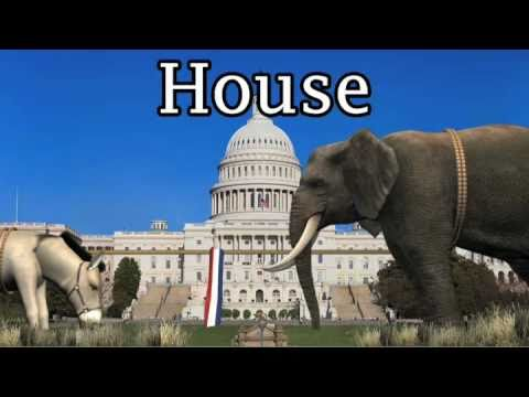 A special animated look at the 2010 US midterm elections