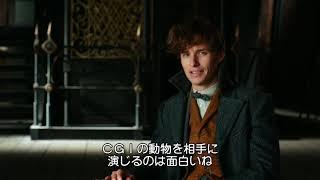 BD/DVD/デジタル【ブルーレイ映像特典(4)】『ファンタスティック・ビーストと黒い魔法使いの誕生』