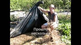 Как избавится от сорняков без Гербицидов. 100% рабочий метод.