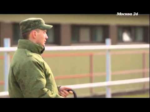 """""""Познавательный фильм"""": Кремлевская кавалерия"""