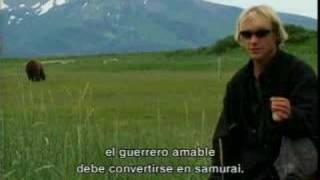 Grizzly Man - Trailer con subtítulos en Español