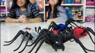 Creepy Crawly Spiders (Tarantulas) - Kids Toys