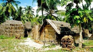 Tanzanie : favoriser la croissance du tourisme devient une priorité pour les experts du ...