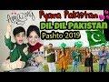 Download lagu DIL DIL PAKISTAN  | New Pashto song 2019 Pyara Pakistan | Hamayoon Khan | Reaction