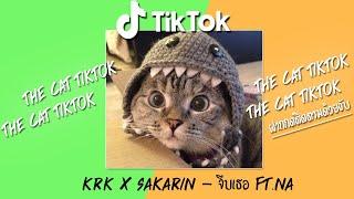 Download lagu เพลงติ๊กต๊อก เพลงดังในtiktok รวมเพลงในtiktok เพลงฮิต เพลงในแอพtiktok เพลงใหม่ล่าสุด[อุปกรณ์ bangmin]