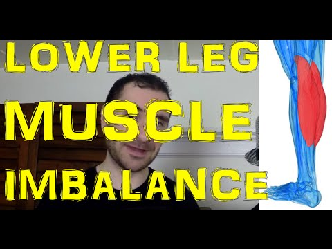 Muscle Imbalance Between Calves & Tibialis Anterior Muscle Explained!
