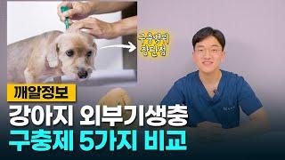 강아지 외부기생충 구충제 5가지 전격 비교! (ft. …