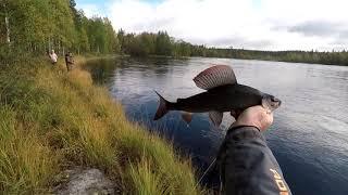 Хариус Рыбалка Осень Рыбалка на хариуса осенью Часть 1